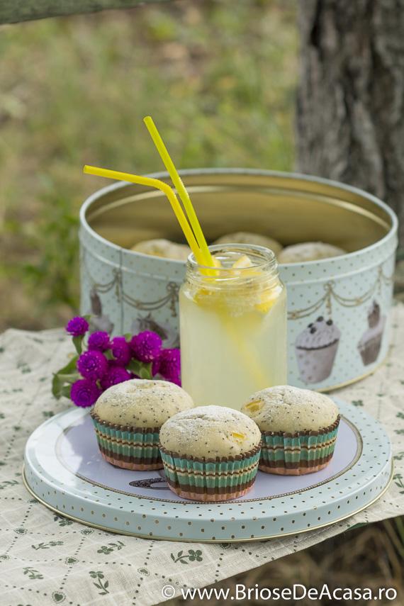Briose cu mac si lamaie, pentru picnic